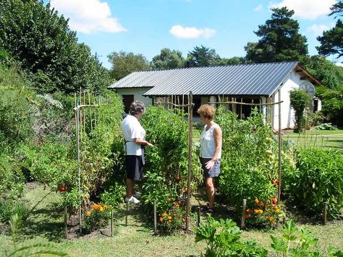Consejos para preparar un jardín ecológico