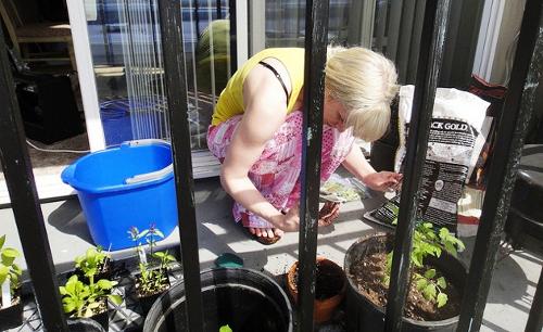 Consejos para ahorrar con tus plantas